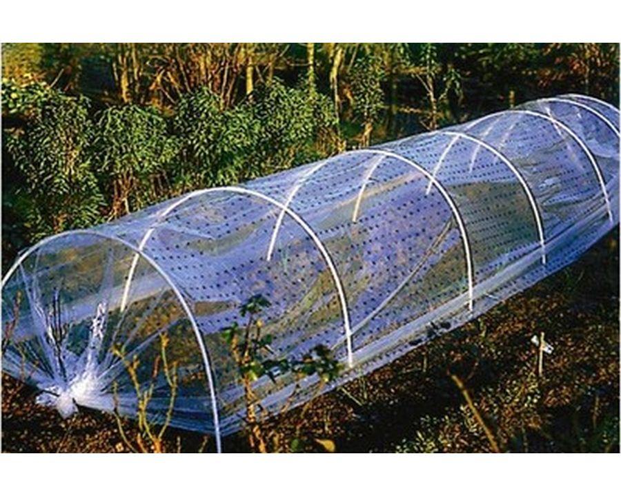 une serre pour prot ger et cultiver des plantes exotiques. Black Bedroom Furniture Sets. Home Design Ideas